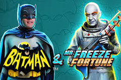 Batman & Mr Freeze Fortune