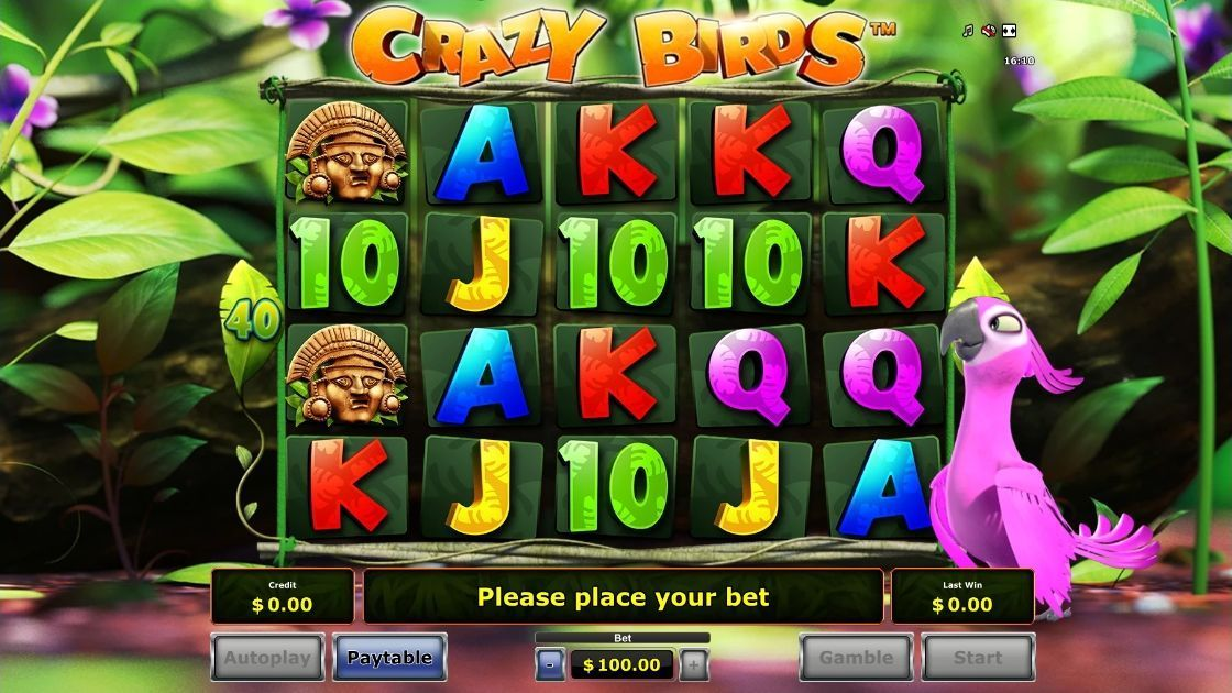 Crazy Birds is an ideal slot for players looking for an animal theme in an online slot machine, as this cute slot is dedicated to colourful birds.Novomatic has produced a slot game with symbols based around the Aztec world and the birds and images related to this culture, such as pink parrots/5(8).Edremit